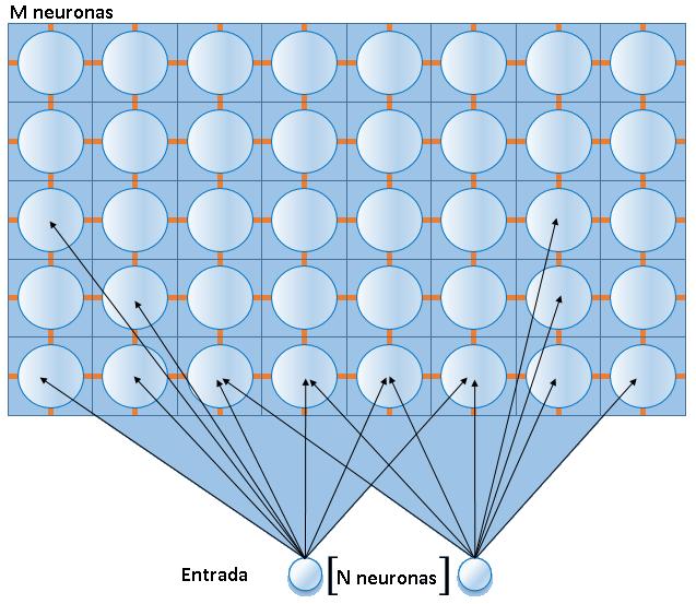 LVQ (Learning Vector Quantization) Kohonen